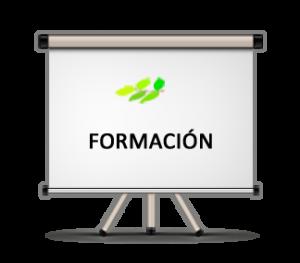 area-formacion