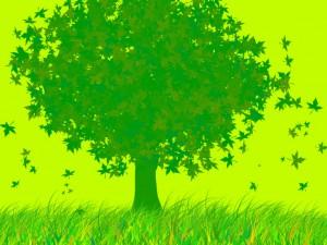 Árbol verde